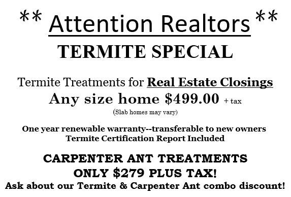 Termite Special
