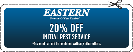 20% off Initial Pest Servcies in Monmouth County